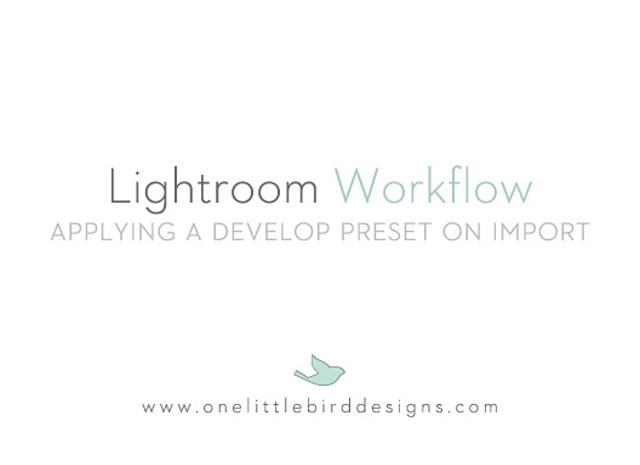 Lightroom Tutorial | Applying Develop Presets on Import by One Little Bird