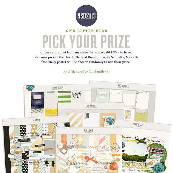 NSD 2013 Pick Your Prize | One Little Bird