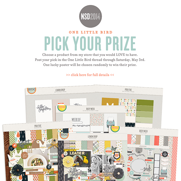 NSD 2014 | Pick Your Prize | One Little Bird