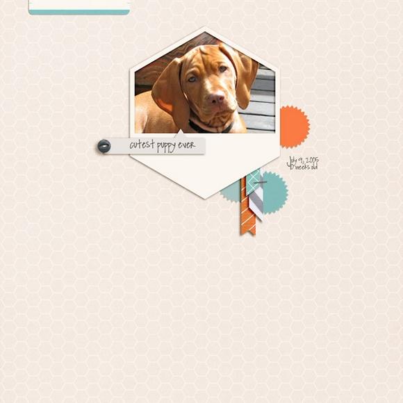 One Little Bird Creative Team Page | by Julie