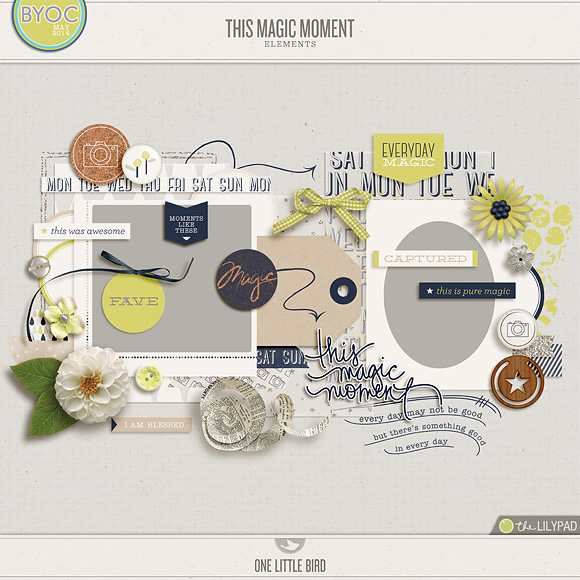 This Magic Moment | Digital Scrapbooking Elements | One Little Bird