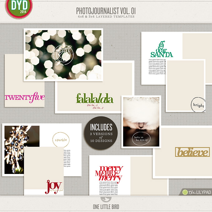 PhotoJournalist Vol. 01 | Photo Templates | One Little Bird