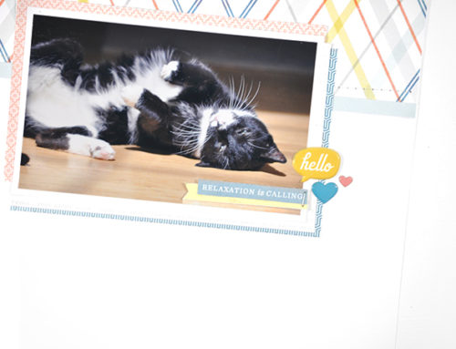Alex Hunter | Scrapbooking Pets
