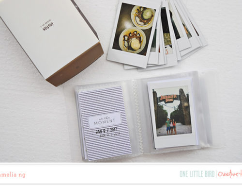 Amelia Ng | Mini-Sized Documenting